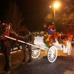 "The Percheron's name is ""Sonny"" and the carriage was driven by Don Veith."