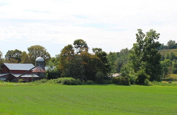 salt-point-farm-and-field