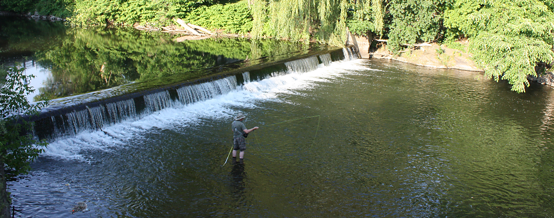 Fishing at the Old Mill