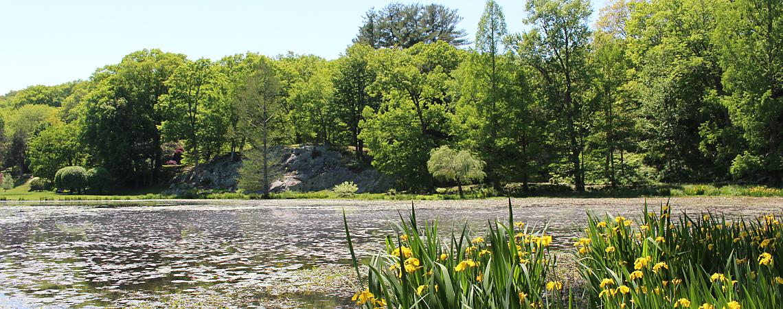 Lakeside at Innisfree