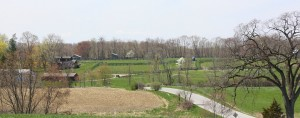 Locust Hill in Spring