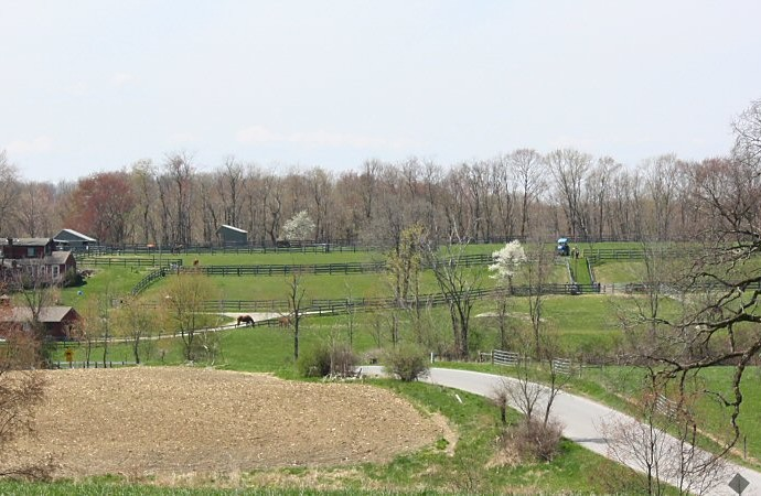 locust-hill-in-spring