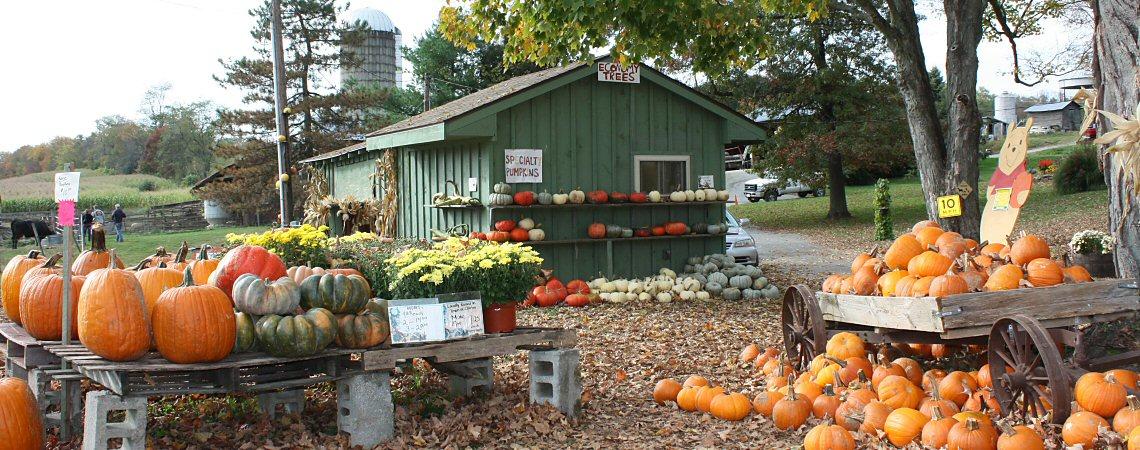 Hahn Farm Stand