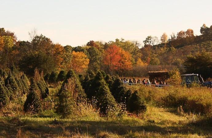 Hahn Farm Hayride