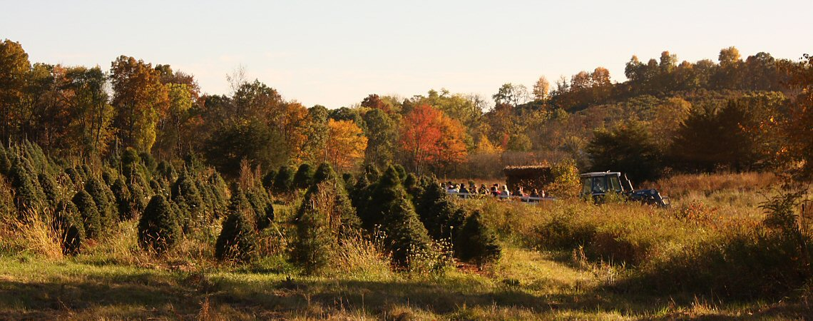 Hahn Farm Hayride